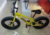 "Rear 6 Speed Youngster Mountain Bike 20"" Fat Bike"