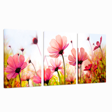 Flower Canvas Art for Wall Decor/Poppy Flower Canvas Printing/Group Wall Picture For Home Decor