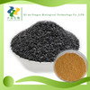 100% Natural High quality Black Sesame Seed extract Powder,Antioxidant Black Sesame Seed Extract