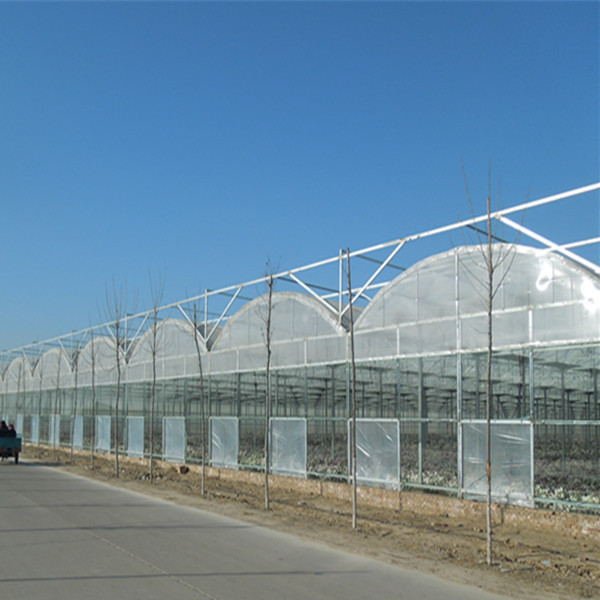 2015 hot sale garden greenhouse polycarbo made in china for Swimming pool greenhouse