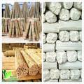 Bambú polos portland oregon