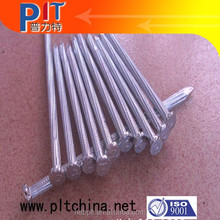flat head concrete nail with zinc plated surface