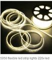Blanco de alto voltaje 3528Tira De Led 110v Impermeable IP68 60leds/m