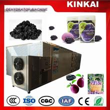 Single set JK10RD Dried Plum, prune fruit dehydration drying machine