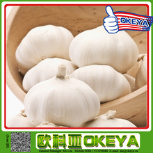 2014 chinese fresh natural garlic