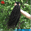 New Products Hot Sale Full Cuticle Unprocessed ethiopian curly virgin hair