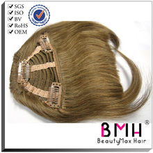new arrival high quality clip in human hair fringe