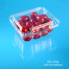 disposable plastic food packaging fruit container