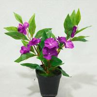 Home Garden Decorative Balsam Flower Faux jewelweed Bonsai Wholesale