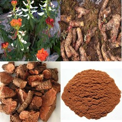 Raw material extract Rhodiola rosea extract (made in china)