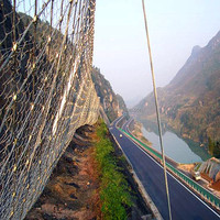 euro fence netting/euro mesh fence/euro net fencing(professional manufacture best price and good quality)