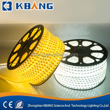 AC220V LED Flexible Strip Light Cool White Waterproof