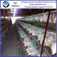 high quality and low price Chicken Cage / wire mesh cage/chicken layer cage