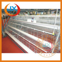 Automatic poultry farming chicken layer cage,equipment for small business at home