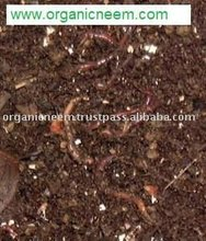 Vermicompost for Organic Cultivation