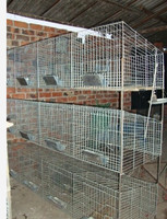 your best choose wire rabbit cages sale/industrial rabbit cages HJ-RC12