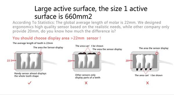 11 Digital dental x ray sensor YSDEN-500.jpg