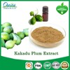 Pure Natural Kakadu Plum Extract