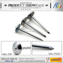 umbrella head roofing nails from manufacture in china