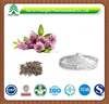 GMP factory supply herb Red Clover Extract powder Formononetin