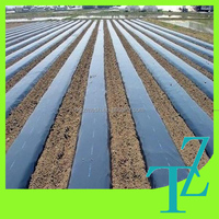 Agriculture black plastic PE reflective mulch film for sale