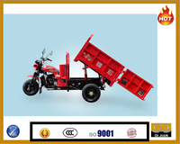 Mexico market Motocarro cheap diesel cargo tricycle hydraulic tipping bucket tricycle