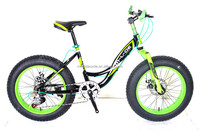 new model 7 speed 20 inch student mountain fat bike MSD-35 MEISIDA MTB bicycle fat /wide tyre