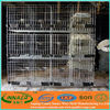wholesales layer design racing pigeon cage for breeding