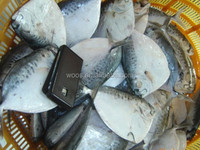 frozen seafood fish fresh moonfish for sale