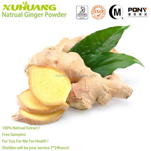 2015 New Batch Good Water Solubility ISO 9001 Free Samples Ginger Powder 120 Mesh Size