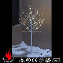 best quality top white birch trees for sale