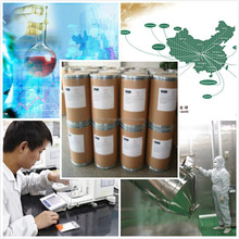 Wholesales VITAMIN E NICOTINATE 16676-75-8 famous supplier bottom price best service from china !!!