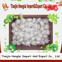 2015 fresh garlic supplier from Tianjin,China 1