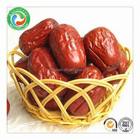 Bottom price Crazy Selling dried red dates jujube fruit