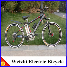 Weizhi Brushless Moter Electric Bicycle