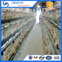 Layer chicken house for sale in kenya farm