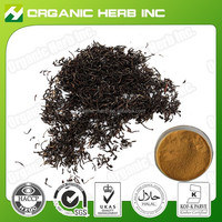 100% Natural Theaflavin 40% instant black tea extract powder | Black Tea Extract