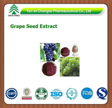 GMP factory supply Goods in stock Grape Seed P.E.OPC 95%