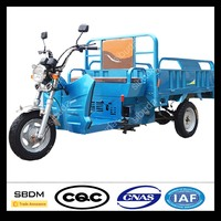 SBDM Motorcycle Cargo Electric Tricycle