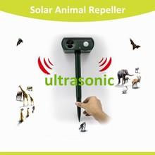 Eco-friendly 40KHZ solar powered yard guard ultrasonic animal bird dog cat repeller DL-308