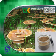 Factory Supply 100% Natural Reishi Mushroom Extract Herbal Extract