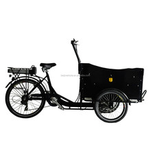 cargo tricycle china/electric three wheel cargo bike for sale/women trike Cargo Bike Manufacturers
