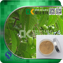 Antimicrobial 100% Natural Olive Leaf Extract Herbal Extract Powder in bulk