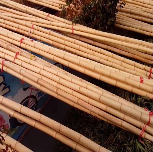 Construction Material Use Of Bamboo As Construction Material