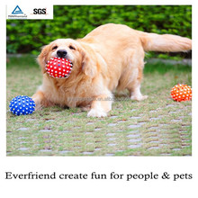 Pet product vinyl squeaky toy for dog