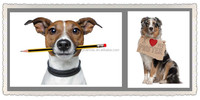 Cheap wholesale canvas photo with frame