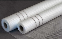 hot sale Alkali-resistant wall reinforced Fiberglass Mesh for concrete wall covering