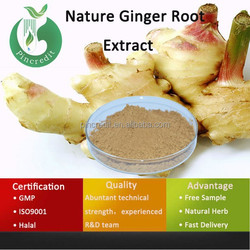 Gingerol Ginger Roots Extract/Ginger Extract/HPLC Test Ginger Extract