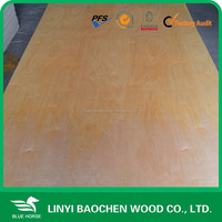 low price laminated birch plywood 18mm