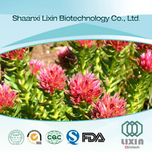 Factory Sell Natural 1%Rhodiola Rosea extract